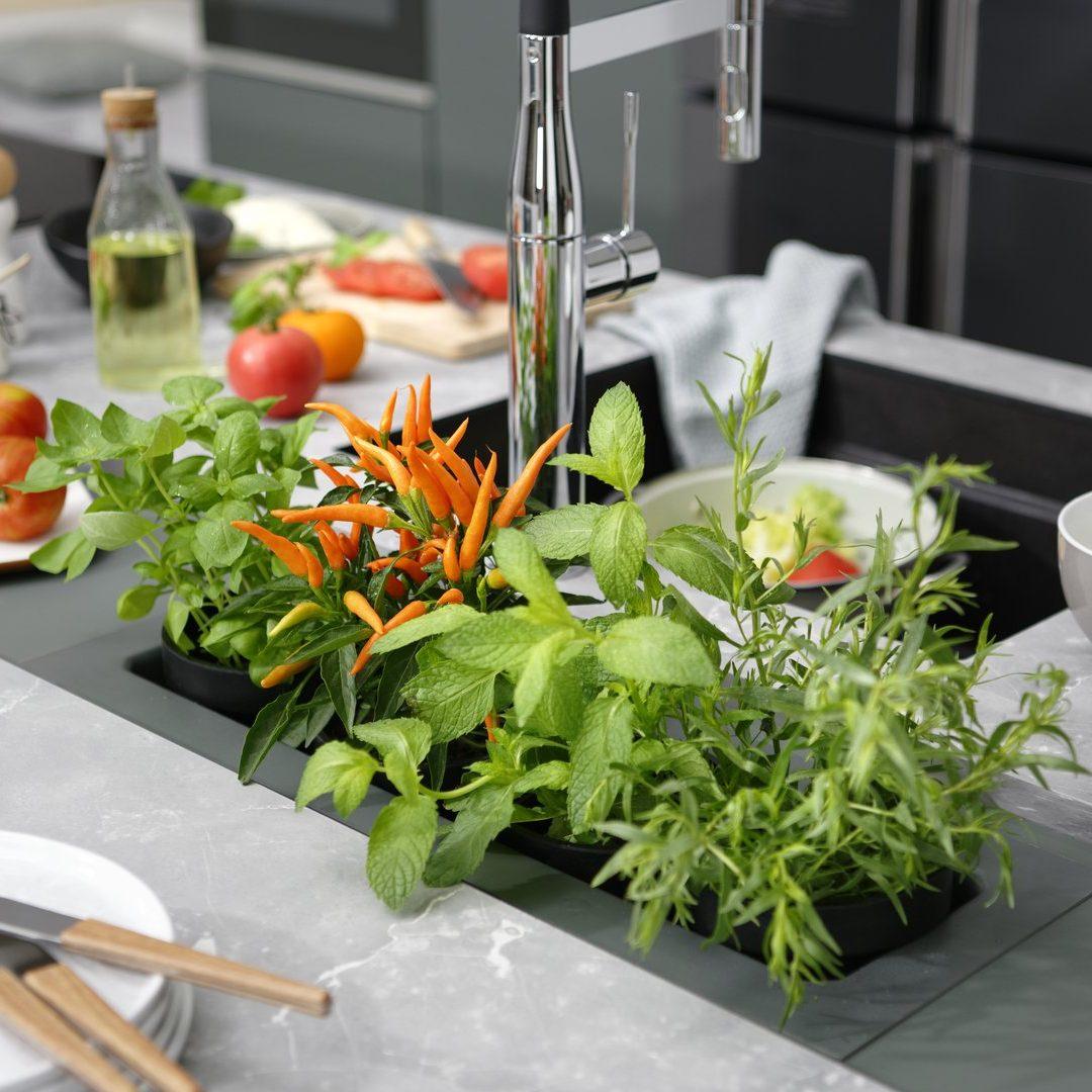 Jardinière intégrée au plan de travail pour un potager d'intérieur.