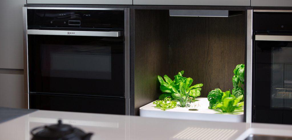 Potager de Vegidair placé entre les fours d'une cuisine.