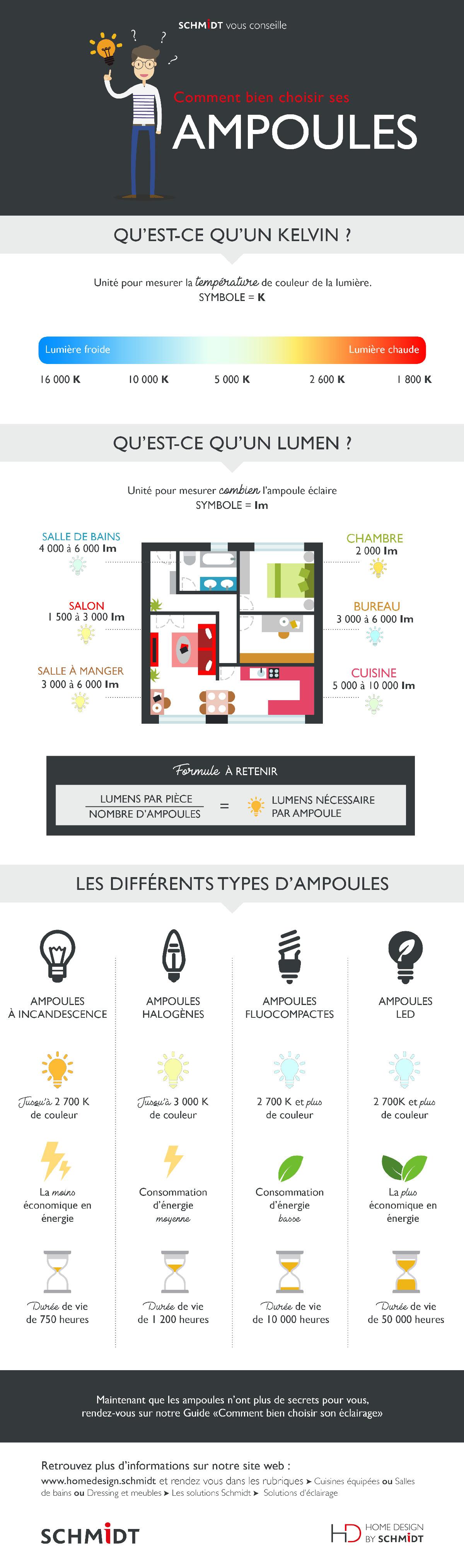 Infographie sur comment bien choisir ses ampoules selon la consommation d'énergie, le durée de vie et la température de couleur.