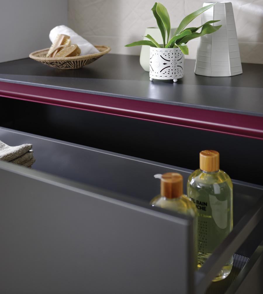 Petites plantes vertes pour la salle de bains