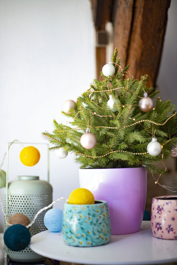 Petit sapin de Noël en pot, par My Little Sapin