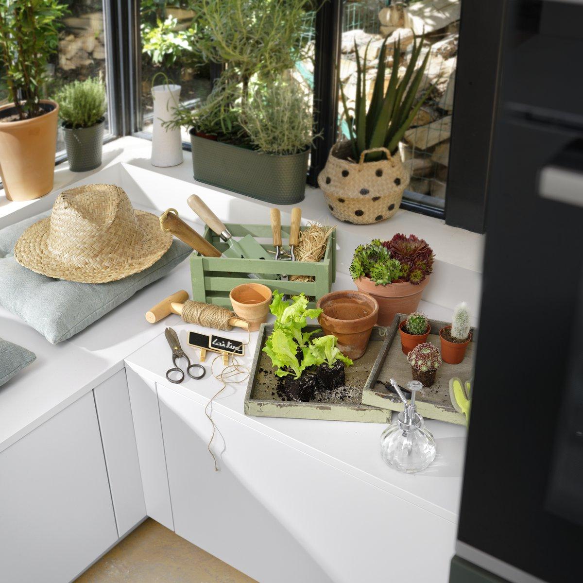 Pour les jardiniers en herbe ou confirmés, Schmidt a imaginé dans cette cuisine un espace pour rempoter, bouturer et tailler ses plantes…
