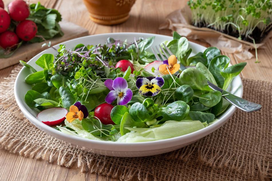 Recettes de printemps avec légumes et fruits de saison ...