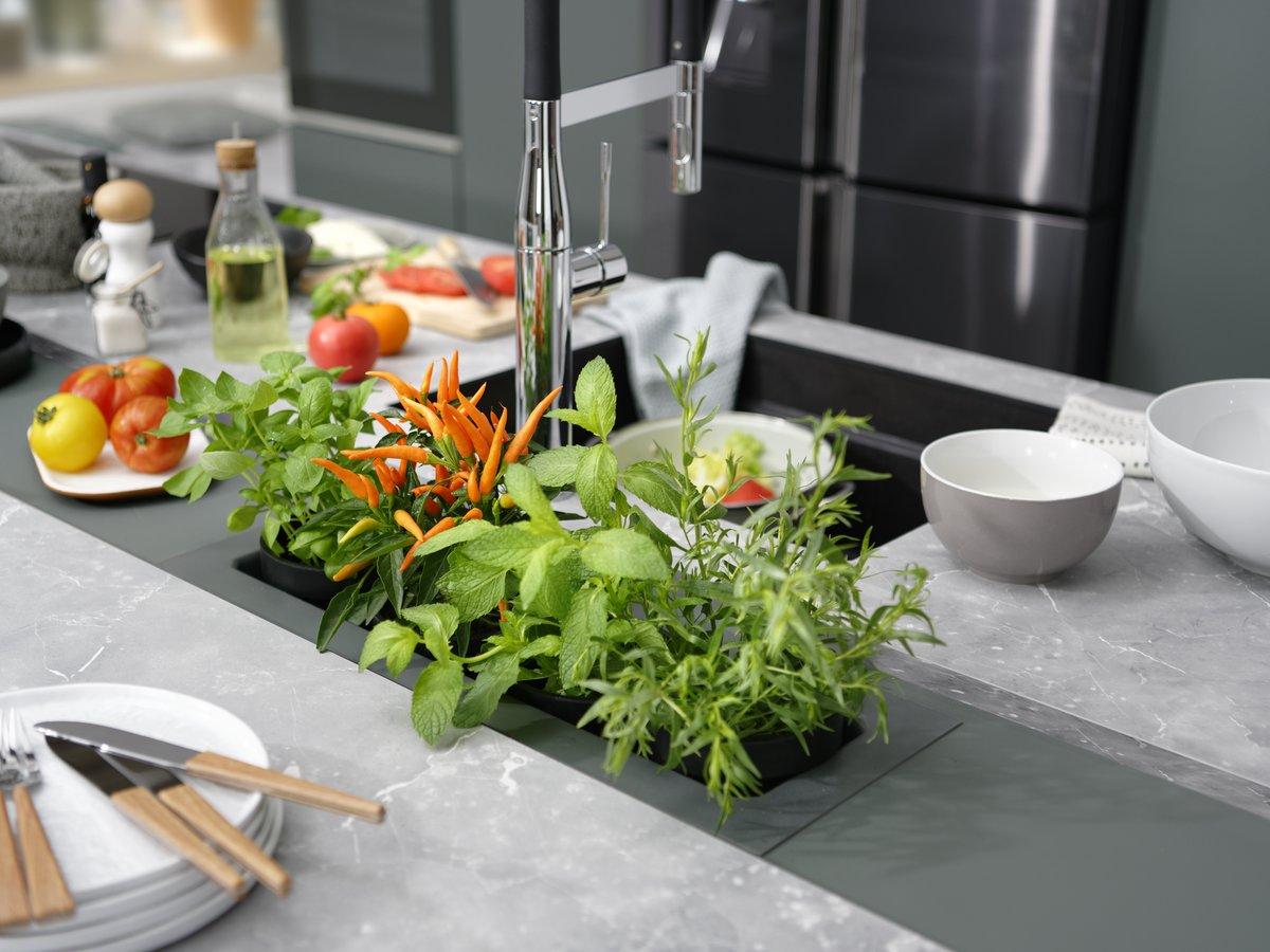 Plantes aromatiques dans jardinière intégrée au plan de travail
