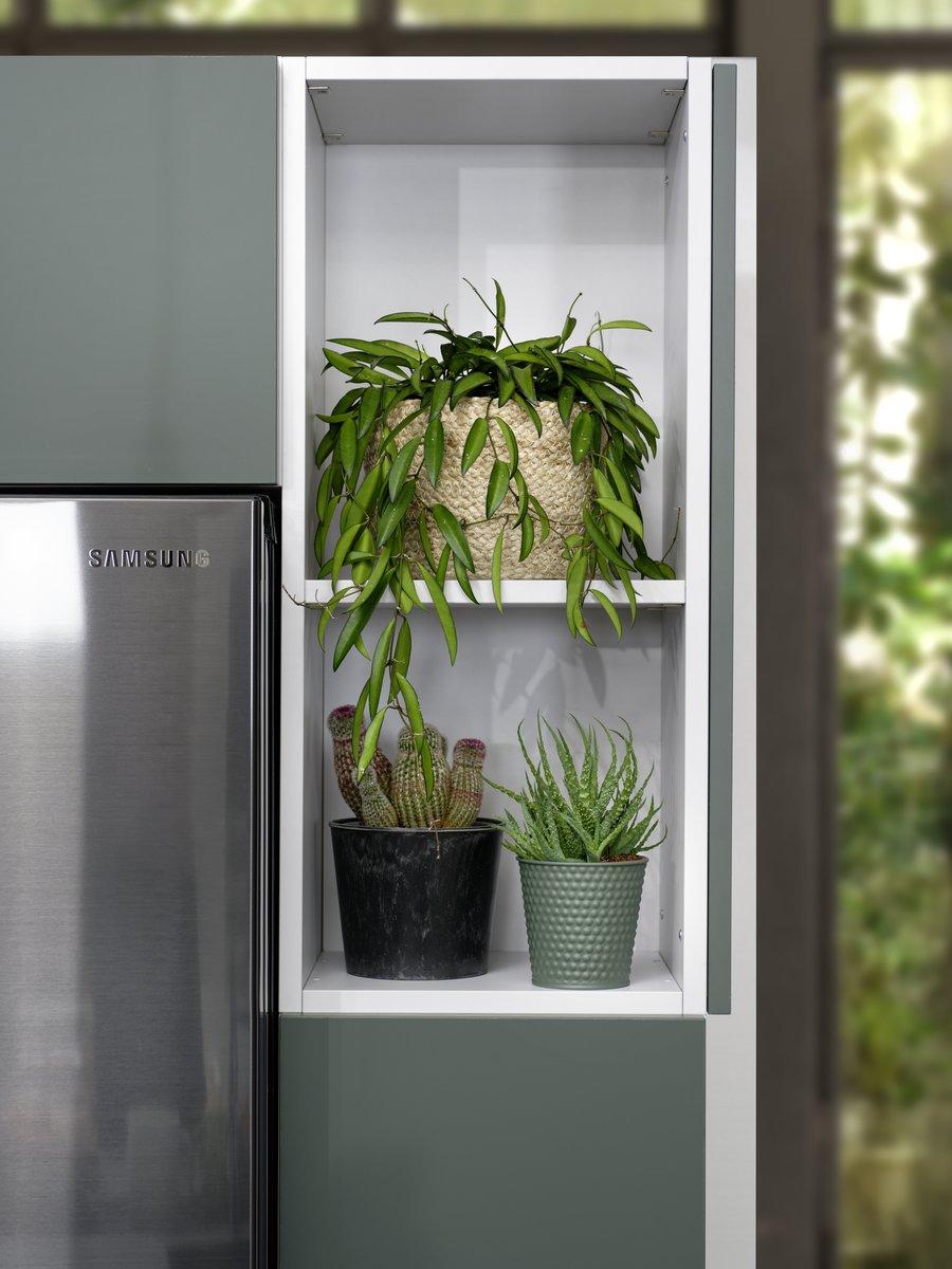 Plantes grasses ou plantes grimpantes, tous deux peuvent trouver place dans ces niches ouvertes.