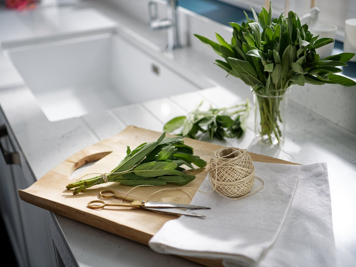 Bouquet de sauge pour préparation aromatique