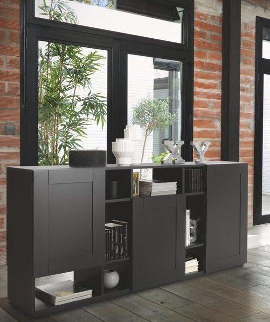 Optez pour l'élégance et la simplicité de cette bibliothèque noire mat.